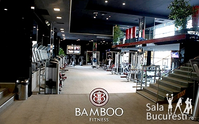 Bamboo Fitness