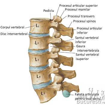Home remedii artroza